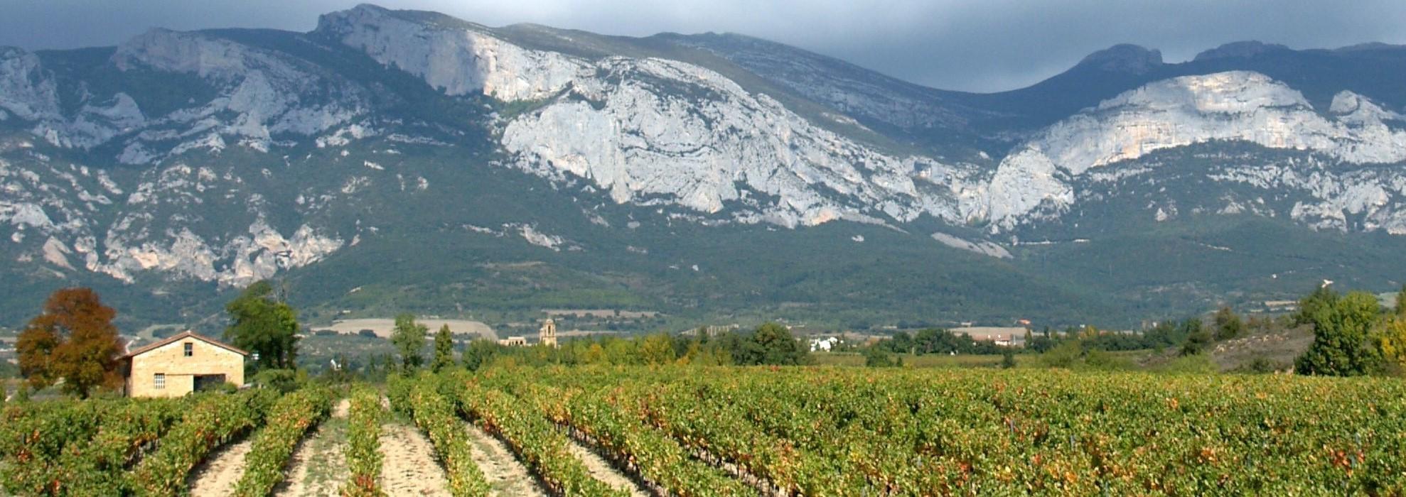 Španielsko - Rioja (4)