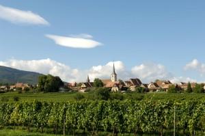 Mittelbergheim-fra